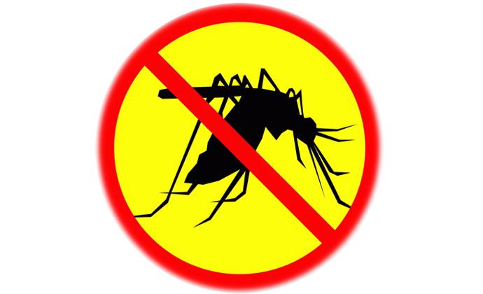 Надежные товары от комаров и муравьев