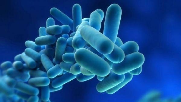 Болезнь легионеров – таинственная и опасная инфекция