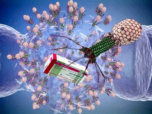 Бактериофаги – альтернативный способ лечения инфекционных заболеваний