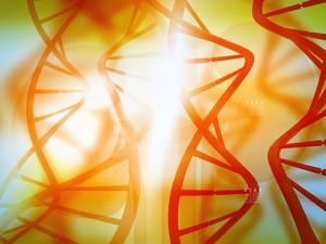 Горизонтальный перенос генов у бактерий связан с миграциями