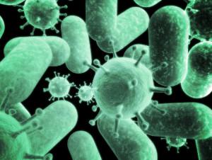 Инфекции негативно влияют на когнитивные функции мозга