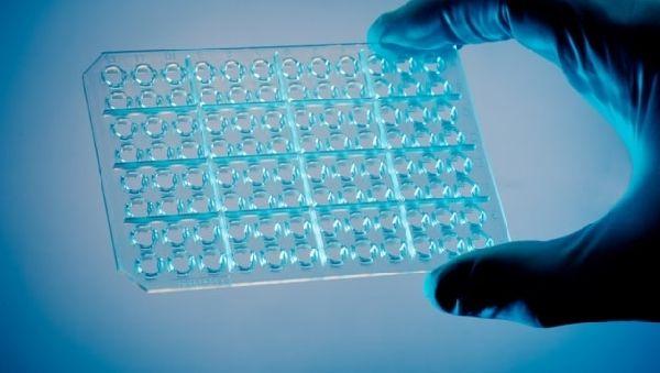 Новый тест распознает все вирусы