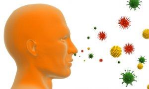 Инфекционная аллергия: причины возникновения, симптомы и лечение заболевания