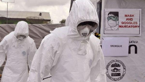 Может ли вирус Эбола передаться через воздух?