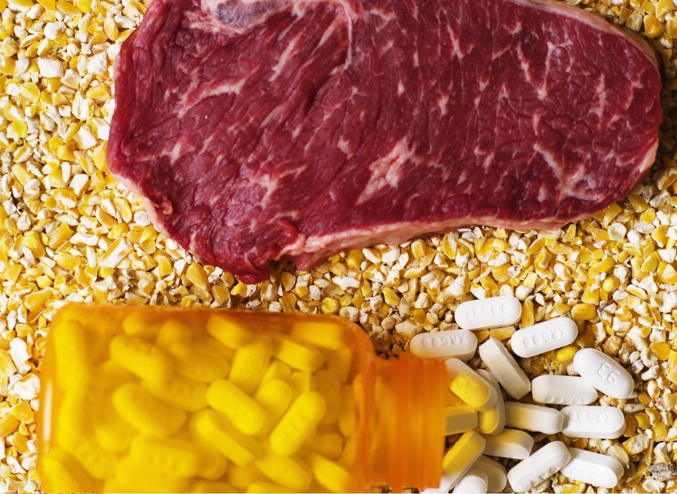 Применение антибиотиков в мировом сельском хозяйстве угрожающе растет
