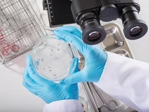 Вакцина против лихорадки денге показала 100% эффективность