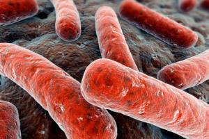 Основные принципы лечения туберкулеза и прогнозы