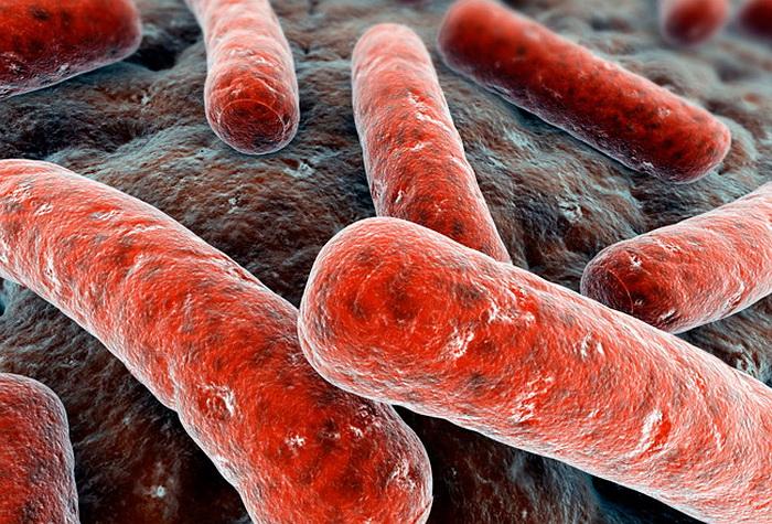 Туберкулез без прикрас: недуг опасен и в наши дни