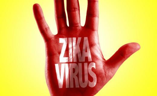 Клинические исследования российской тест-системы для выявления вируса Зика будут завершены в через несколько недель