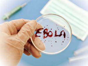 Российская вакцина против лихорадки Эбола готова к полевым испытаниям