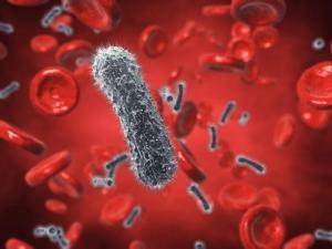 Устойчивые бактерии ежегодно «воруют» 100 трлн долларов