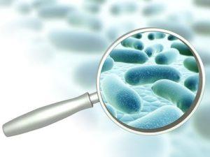 Анализ стоимостью в два доллара поможет быстро обнаружить госпитальные инфекции