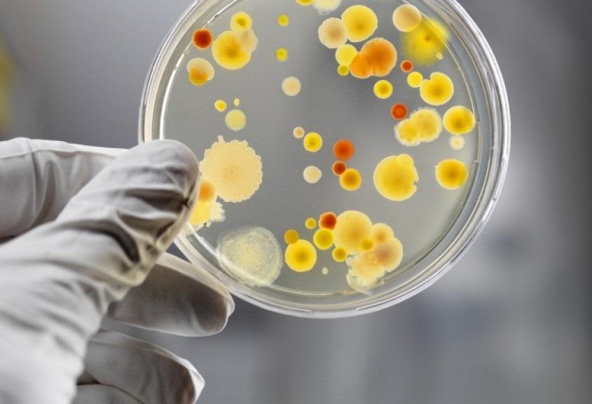 Неправильная дезинфекция: причина внутрибольничной инфекции