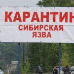 Якутов пугали по WhatsApp сибирской язвой