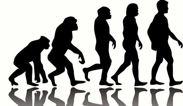 Эксперты: эволюцией человека управляют вирусы
