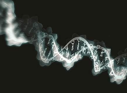 Учёные выявили опаснейшие бактерии, имеющие ген «устойчивости»