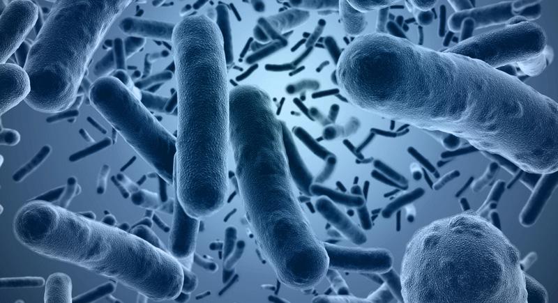 Инфекционные болезни: что важно знать