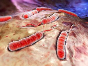 Группа крови как прогностический фактор при холере