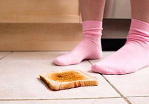 Поднимать еду с пола опасно, предупреждают ученые