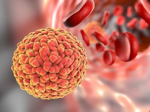 Заражение вирусом Зика опасно и на последних неделях беременности