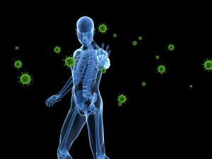 Ученые создали мышиную модель человеческого иммунитета