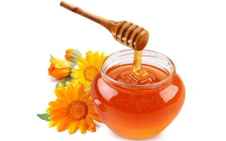 Мед: сладкое лекарство от инфекций и прыщей