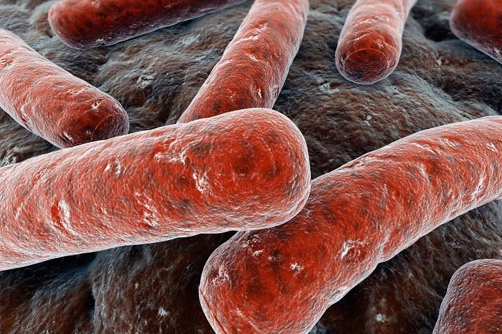 Скворцова: смертность от туберкулеза в РФ за 8 лет упала на 60%