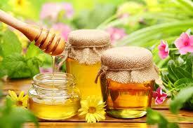 Мед, применение при различных заболеваниях