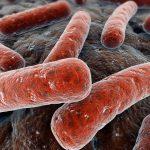 С начала года туберкулез выявлен у 117 липчан