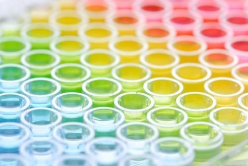 Микробиологическая диагностика и половые инфекции