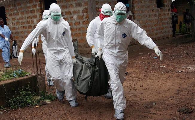 Число заражений лихорадкой Эбола в Конго возросло до 29