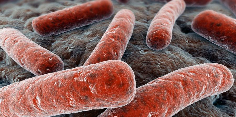 Туберкулез кожи – тяжелое хроническое заболевание