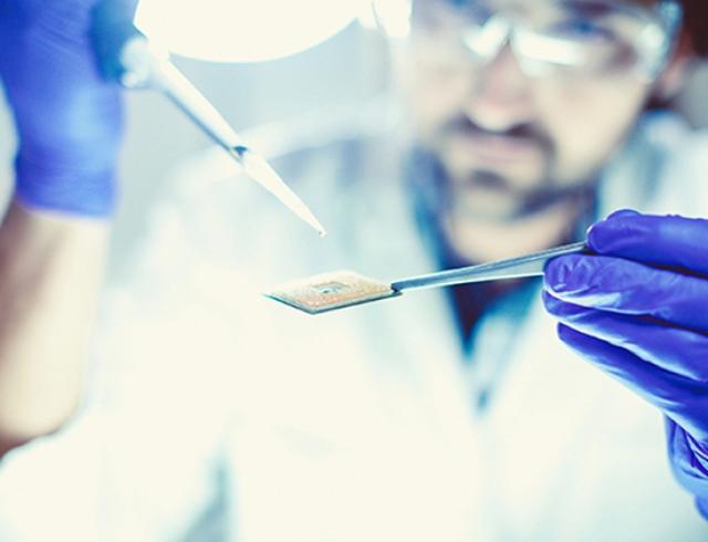 Супербактерии против антибиотиков: как лечиться и не загубить человечество