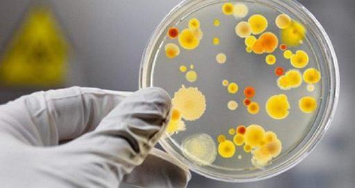 Медики назвали первые симптомы энтеровирусной инфекции