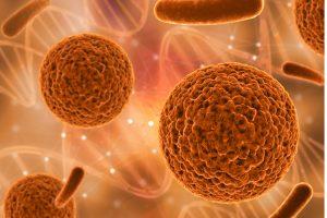 В человеческой сперме найдено множество вирусов (не грипп)