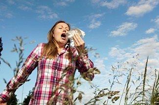 Пробиотики помогают при сенной лихорадке и облегчают жизнь аллергиков в сезон цветения