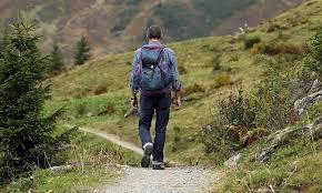 Что делать, если вы заблудились в лесу — Как найти путь домой без помощи?