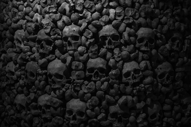 Бубонная чума пришла в Европу в каменном веке