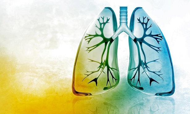 Гормоны щитовидки лечат тяжелый фиброз легких