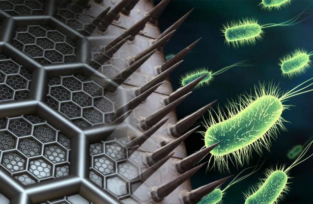 Графеновые шипы защитят импланты от бактерий
