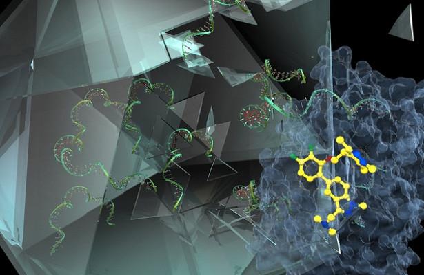 Молекула защитит человека от всех видов простуды
