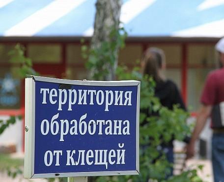 В Башкирии от укусов клещей пострадали 597 детей
