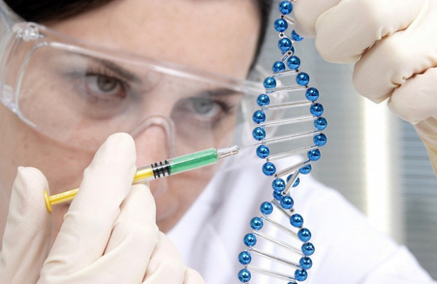 Гигантские вирусы оказались «фабрикой генов»