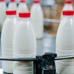 В каких марках российского молока имеются антибиотики?