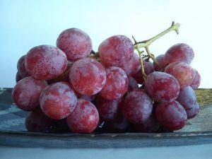 Виноград в сезон простуд приносит особенную пользу здоровью