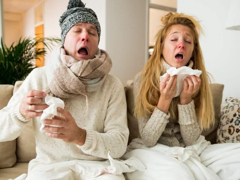 Названы признаки, по которым можно отличить поллиноз от простуды
