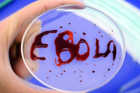 В России испытают новую вакцину от Эболы