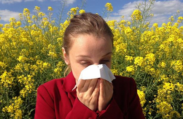 Почему не стоит доверять мифам об аллергии