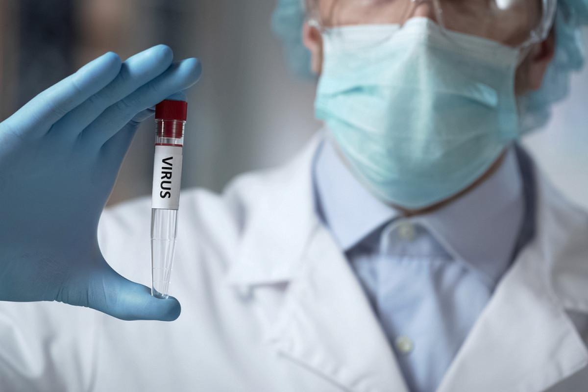 Ученые раскрыли масштабы страшнейшей эпидемии в истории