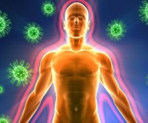 Рацион для крепкого иммунитета